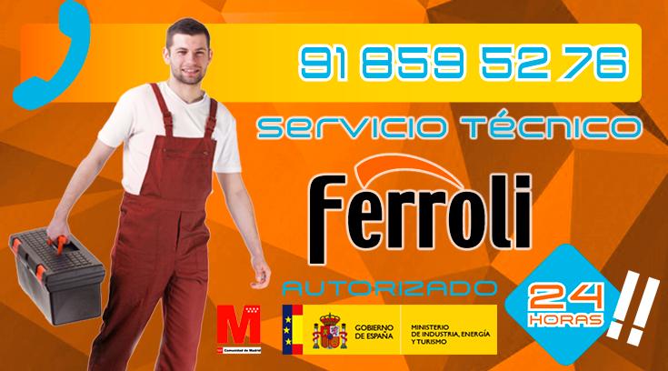 Servicio Tecnico Calderas Ferroli Collado Villalba